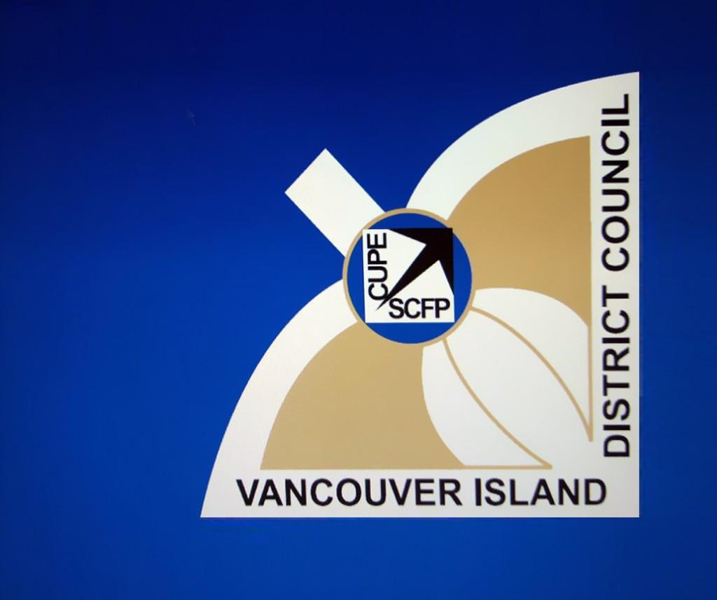 VIDC flag logo